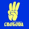 «Свобода» заявляет о недопуске 5 депутатов Рады в МВД для встречи с Захарченко по ситуации у Киевсовета 19 августа