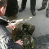На Липской митингующих избивают и «пакуют» в автозаки (ФОТО)