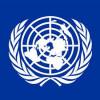 Совет безопасности ООН решил изучить «подвиги» Беркута (ДОКУМЕНТ)