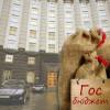 Готовый проект госбюджета третий месяц лежит «под сукном» у Яценюка