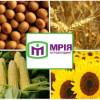 Интерпол объявил в розыск главу украинского агрохолдинга-банкрота «Мрия»