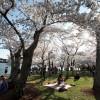 Куда пойти на майские праздники в Киеве (СПИСОК)