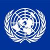 Пан Ги Мун не будет отправлять миротворцев ООН в Украину