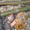 На Луганщине рядом с химзаводом обнаружен склад оружия террористов, — СБУ (ФОТОРЕПОРТАЖ)