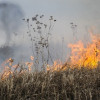 В «Чернобыльской пуще» пожар тушат круглосуточно, ситуация контролируется, — ГосЧС