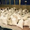 В Ровенской области изъята рекордная партия янтаря: 2,5 тонны на 3 миллиона долларов