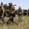 Украинские военные продолжают зачистку Старогнатовки от террористов