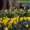 Погода порадует украинцев летним теплом