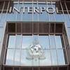 Интерпол объявил в розыск «белую вдову» из Найроби