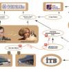 «Черный» бизнес Захарченка продолжает жить, только смотрящие теперь другие