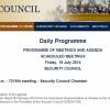 Совбез ООН созывает экстренное заседание в связи со сбитым Боингом