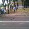 В Донецке пьяные боевики на машине скорой помощи вылетели на встречку и разбились (ФОТО+ВИДЕО)