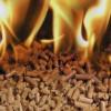 Киевщина переходит на альтернативные виды топлива