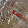 Пожары в Забайкалье перешли границу с Монголией – Гринпис России
