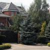 Активисты с помощью дрона сняли имение «бриллиантового» прокурора Корнийца (ВИДЕО)