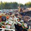 Для российских таможенников разрабатывают правила уничтожения санкционных продуктов